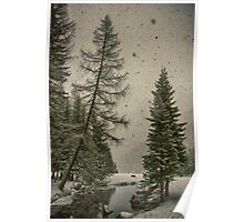 Heavy snowfall winter landscape color - Alberi d'Inverno Poster