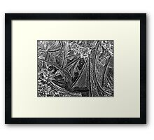 Ice patterns Framed Print