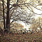 bikerack by nessbloo