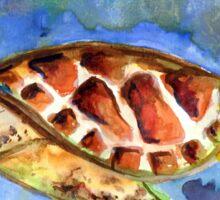 The Happy Turtle - Watercolor  Sticker
