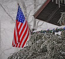 An American Christmas by Lois  Bryan