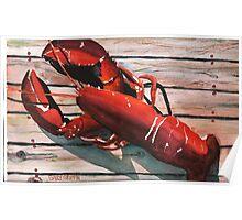 Lobster Poster