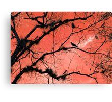 Peach Sky Canvas Print