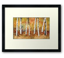 Snail in the Park Poster Framed Print