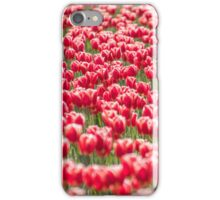Tulipa 'Buster', at Roozengaarde (tulips.com), Mount Vernon WA. iPhone Case/Skin