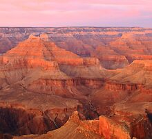 Pink Pastel Sky over the Grand Canyon by Roupen  Baker
