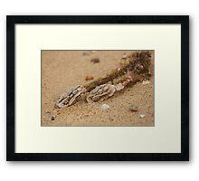 Alien Brains - Beachcomber Series Framed Print
