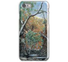 Deep Reflection iPhone Case/Skin