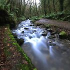 the trail to st nectan's glen by Gary Sutton