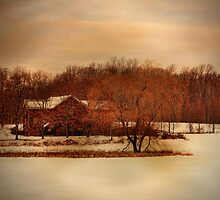 Winter Farm by PineSinger
