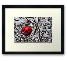 Red Ornament Framed Print