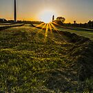 Yellow Grass On The Other Side by Nishant Kuchekar