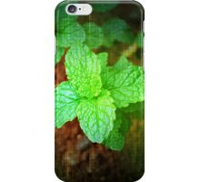 Fresh Mint iPhone Case/Skin