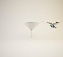 colibrí by logoferoz