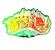Three frogs. Photographic Print
