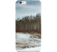 Country Winter 19 iPhone Case/Skin