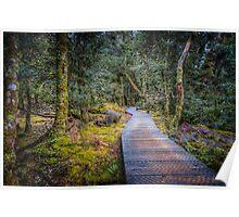 Enchanted Walk Poster
