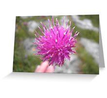 Irish Wildflower Greeting Card