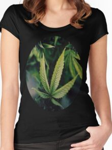 MxryJxne Women's Fitted Scoop T-Shirt
