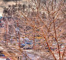 Truck Behind The Tree by Adam Kuehl