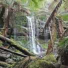 Russell Falls, Mt Field National Park, Tasmania by Margaret  Hyde