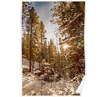 Beautiful Rocky Mountain Winter Day Poster