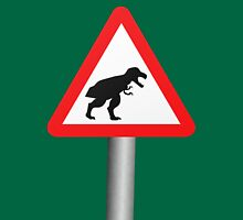 Danger: Tyrannosaur Crossing Womens Fitted T-Shirt