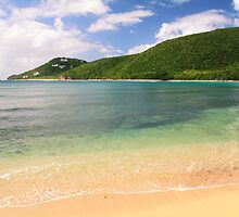 Reef Bay St. John by Roupen  Baker