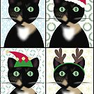 Meowy Christmas by MaggieGrace