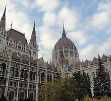 Hungarian Parliament Building by rhiannonk