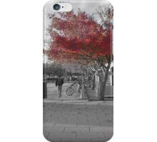 Winter Change iPhone Case/Skin