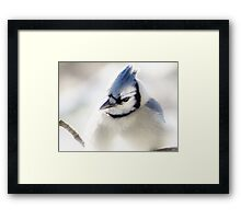 Winter Blues & Grays Framed Print