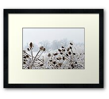 Snowy contrasts Framed Print