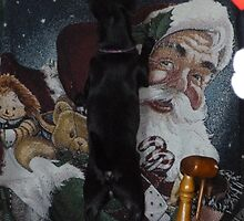 Looking For Santa by WildestArt