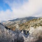 Christmas in the Smokies by dc witmer