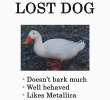 Lost Dog / Duck by rynooooooooooo
