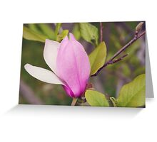 AFE Pink Magnolia Greeting Card