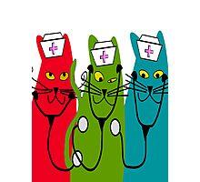Nurse Cats Wearing Nurse Caps Photographic Print