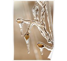 Winter Ice Storm Poster
