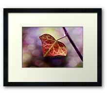 Light up, light up...As if you have a choice Framed Print