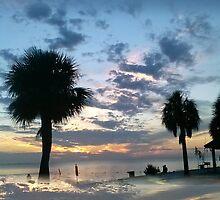 Green Key at Sunset, New Port Richey, FL by Ellen Turner