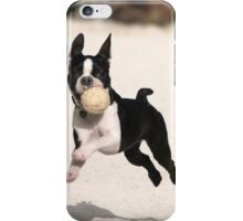 Cute Boston Terrier Playing iPhone Case/Skin