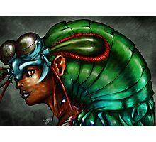Creature Feature - Lady Mantis Shrimp Photographic Print