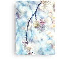 White Pink Plum Blossoms Vintage Concrete Texture Canvas Print