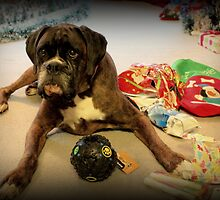 Is That Another Christmas Present For Me ? by Evita