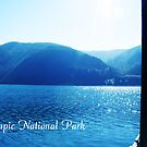 Olympic National Park at Seattle, U.S.A. by naturematters
