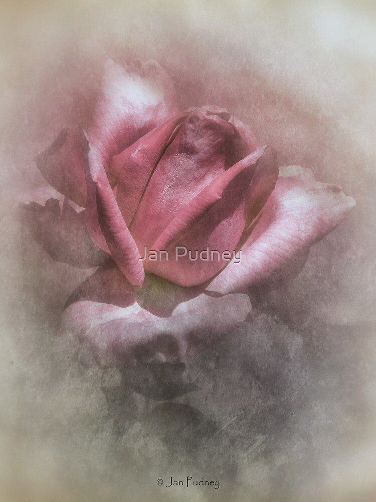 Pink 3 by Jan Pudney