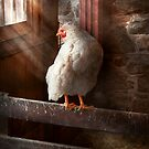 Animal - Chicken - Lost in thought by Mike  Savad
