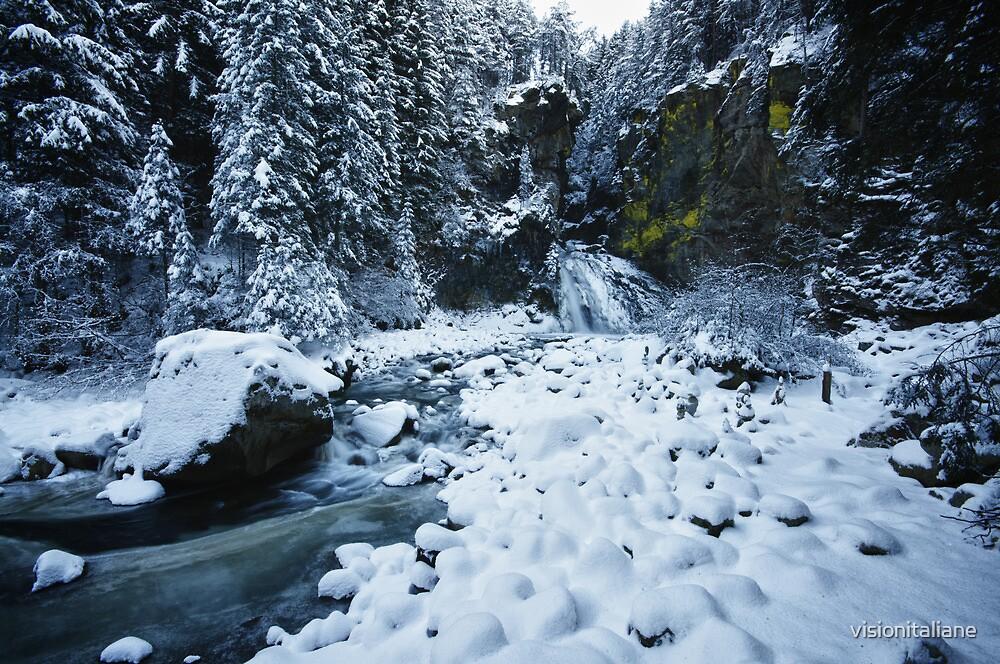 Winter scene snow in the forests and frozen creek of the Alps - color - Il Sangue dell'Inverno by visionitaliane