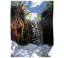 Little waterfall macro close up of a stream naturalistic wall art - La cascata degli Gnomi Poster